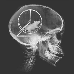 Hamster-Wheel-Skull-X-Ray-T-Shirt-Tee