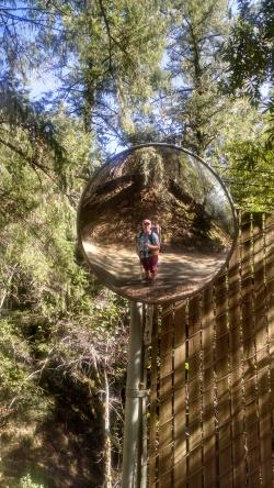 Road Mirror Reflection